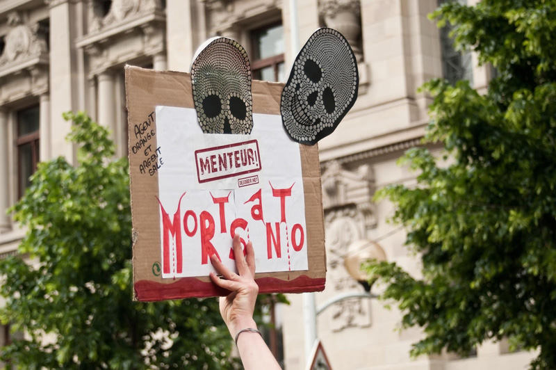 Game Over for Monsanto: $2 Billion Verdict to Give Way to Massive Wave of Settlements, Top Roundup Litigator Says
